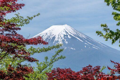 Japan Tokyo Kyoto Fuji Packages