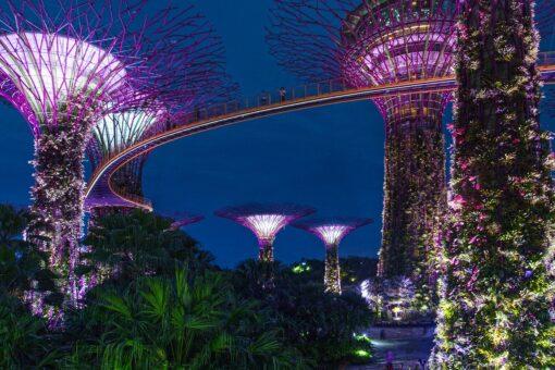 Singapore Bali Honeymoon Packages